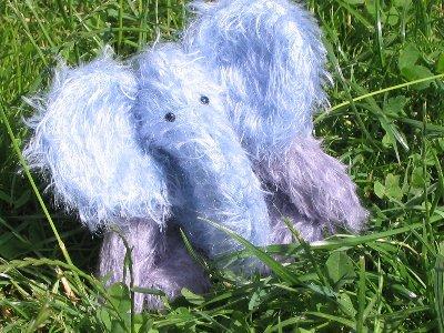 elefant0001400x300.jpg
